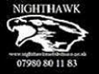 9. Nighthawk Mobile Disco & Karaoke - Logo