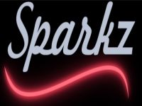 Sparkz Disco and Entertainment logo picture